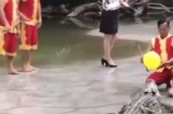 رد فعل صادم لمدرب تماسيح بعد سقوط زميله في بركة مياه