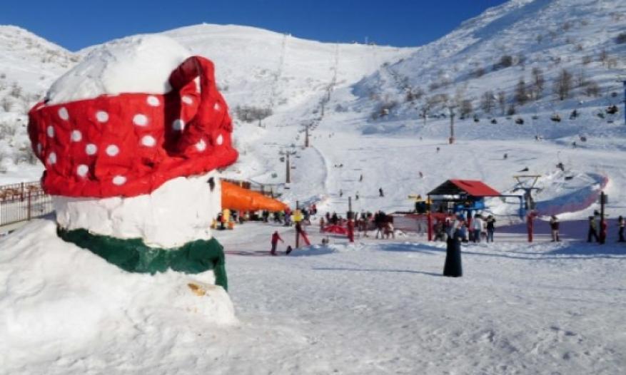 شرطة الاحتلال توصي بعدم التوجه للتزلج في جبل الشيخ