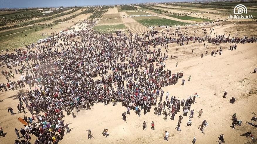البرديني يدعو الرئيس أبو مازن إلى غزة ويطالب بملاحقة جادة لملاحقة مجرمي الحرب الإسرائيليين
