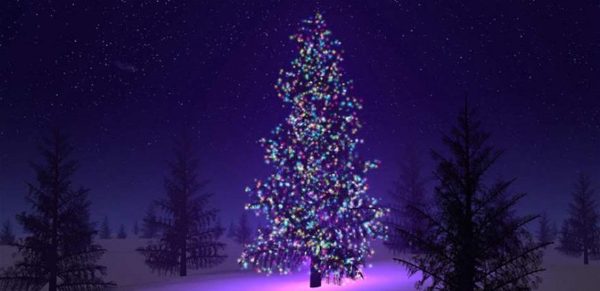 هذه هي أغلى شجرة ميلاد.. كم بلغت كلفتها؟ (صور)