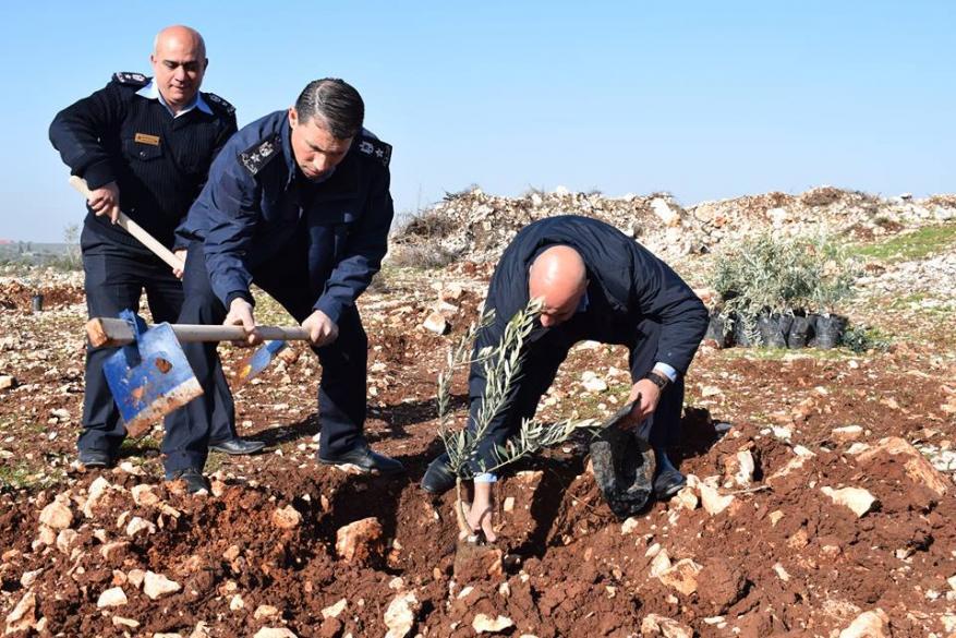 الشرطة تشارك بزراعة اشتال الزيتون بمناسبة يوم الشجرة في قلقيلية