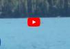 مخلوق محير يظهر بالصدفة أثناء تصوير بحيرة في الصين