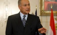 أبو الغيط: سوريا ستعود للجامعة العربية لا محالة