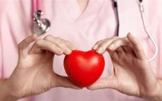 بينها صعود السلم.. عادات يومية للحفاظ على صحة قلبك