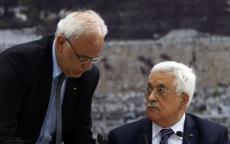 عريقات: يُريدون تحويل القضية الفلسطينية إلى مطار في إيلات وميناء في قبرص