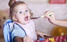 السن المناسبة لبدء إطعام طفلك وقائمة بالأطعمة المناسبة وعدد الوجبات