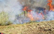 7 حرائق في مستوطنات غلاف غزة