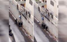 بيننا وبين القدس جدار، صورة
