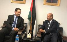 د. ابو هولي وكرينبول يبحثان اليات الدعم السياسي والمالي لوكالة الغوث