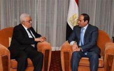 اتفقا على مواصلة التنسيق.. الرئيس عباس يجتمع بالرئيس عبد الفتاح السيسي