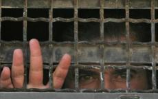 هيئة شؤون الأسرى: الأسرى ينتصرون على الاحتلال ويواصلون تعليمهم رغم أنف السجان