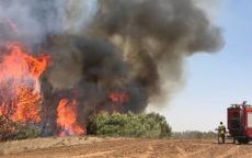 حريقان في مستوطنات غلاف غزة بفعل الطائرات الورقية