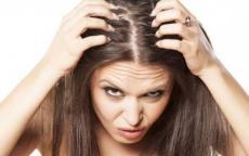 لهذه الأسباب يتسقاط الشعر.. وهذا عدد الشعرات
