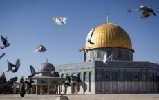 اجتماع وزاري عربي أوروبي في بروكسل لبحث قرار واشنطن بشأن القدس