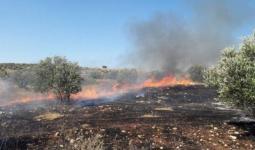 اندلاع حريق في أراض رعوية جنوب بردلة بالأغوار الشمالية
