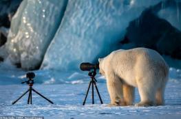 لن تتمالك نفسك من الضحك.. أبرز الصور المضحكة للحيوانات هذا العام