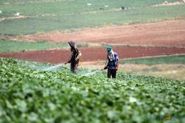 الاحتلال يواصل منع مزارعي فلامية من دخول أراضيهم خلف الجدار