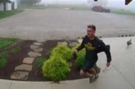 شاهد: كاميرات المراقبة ترصد حادثا طريفا لدجاجة مع شاب