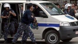 الخليل: ضبط 15 ألف صوص حبش لاحم قادمة من إسرائيل