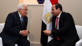 حماس ترحب بتأكيد مصر على استمرار الجهود لتحقيق المصالحة الفلسطينية