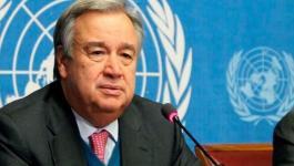 الأمم المتحدة تعين منسقا جديدا لعملية السلام خلفا لميلادينوف