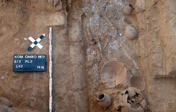 استمرار احتفالات منطقة آثار أسوان بالاكتشافات الأثرية الجديدة
