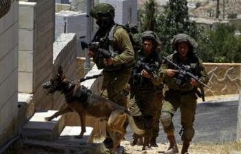 الاحتلال يعتقل 11 فلسطينياً من الضفة والقدس