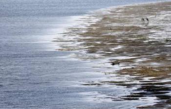 خبراء : بحر لا قرار له تحت الصحراء الغربية قد يقي مصر الظمأ