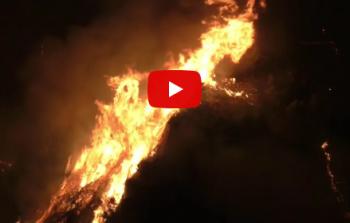 أكثر من 20 قتيلا جراء حرائق في محيط أثينا