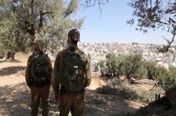 اقتلاع عشرات أشجار الزيتون وتجريف أراض جنوب غرب بيت لحم