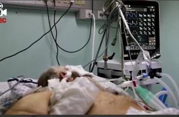 بالفيديو: مشاهد قاسية لمصابين كورونا في غزة من داخل العناية المركزة