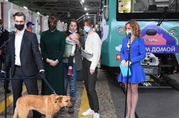 طبيبة تشرح سلوك كورونا لدى الحيوانات الأليفة ومدى خطورته على البشر