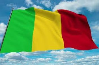 رئيس المجلس الوطني الانتقالي لجمهورية مالي يؤكد على تعزيز التعاون البرلماني مع فلسطين