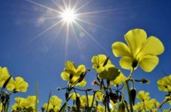 الطقس: أجواء صافية ويطرأ ارتفاع ملموس على درجات الحرارة