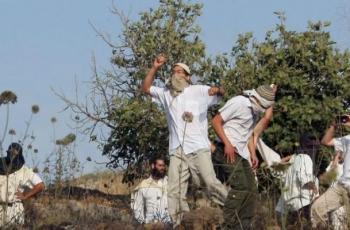 مستوطنون يستولون على 3 دونمات وبئر مياه في قرية كيسان شرق بيت لحم